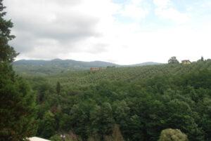 krajobraz toskanii