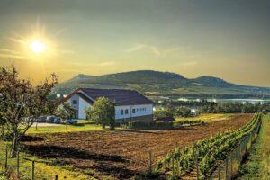 znane z pięknych winnic, świetnych win i Morawskiego Krasu południowe Morawy w Czechach