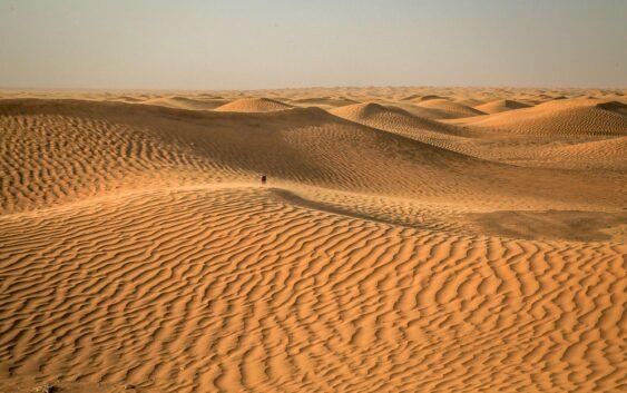 pustynia Sahara to jedna z wielu atrakcji tej udanej wycieczki po Tunezji